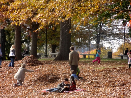 I just love that they don't rake up the leaves, but leave them for families to play in.  Have I mentioned before that I love Boston!